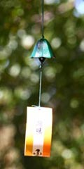 Furin - Lily