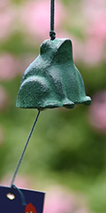 Furin - Frog